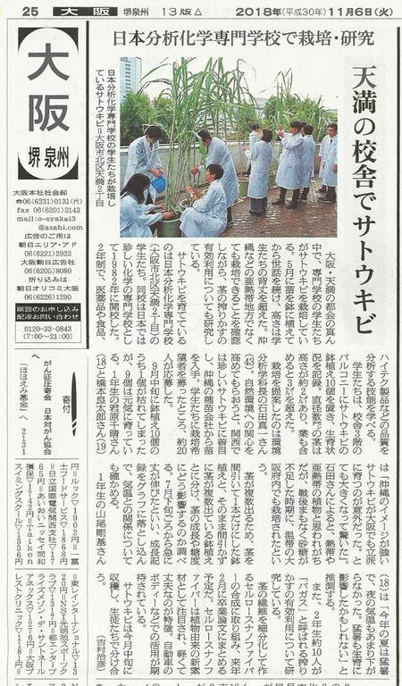 【サトウキビ/2018.11.6】朝日新聞掲載.jpg